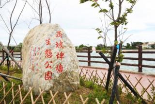 西坡埤塘生態公園啟用。