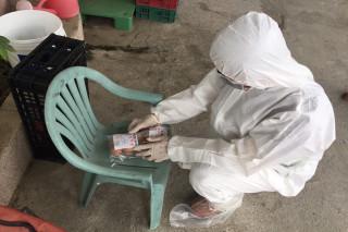 防「毒蛋」,市府配合中央第一時間啟動養蛋雞場全面檢驗作業。(圖/台南市動保處提供)