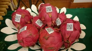 農糧署建議當季水果祭祀最好。