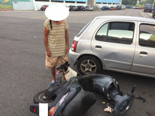 主人車禍受傷 忠犬全程守護