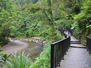 坪林北勢溪上游的金瓜寮魚蕨步道,可探訪低海拔溪流森林生態之美。(圖/觀旅局提供)