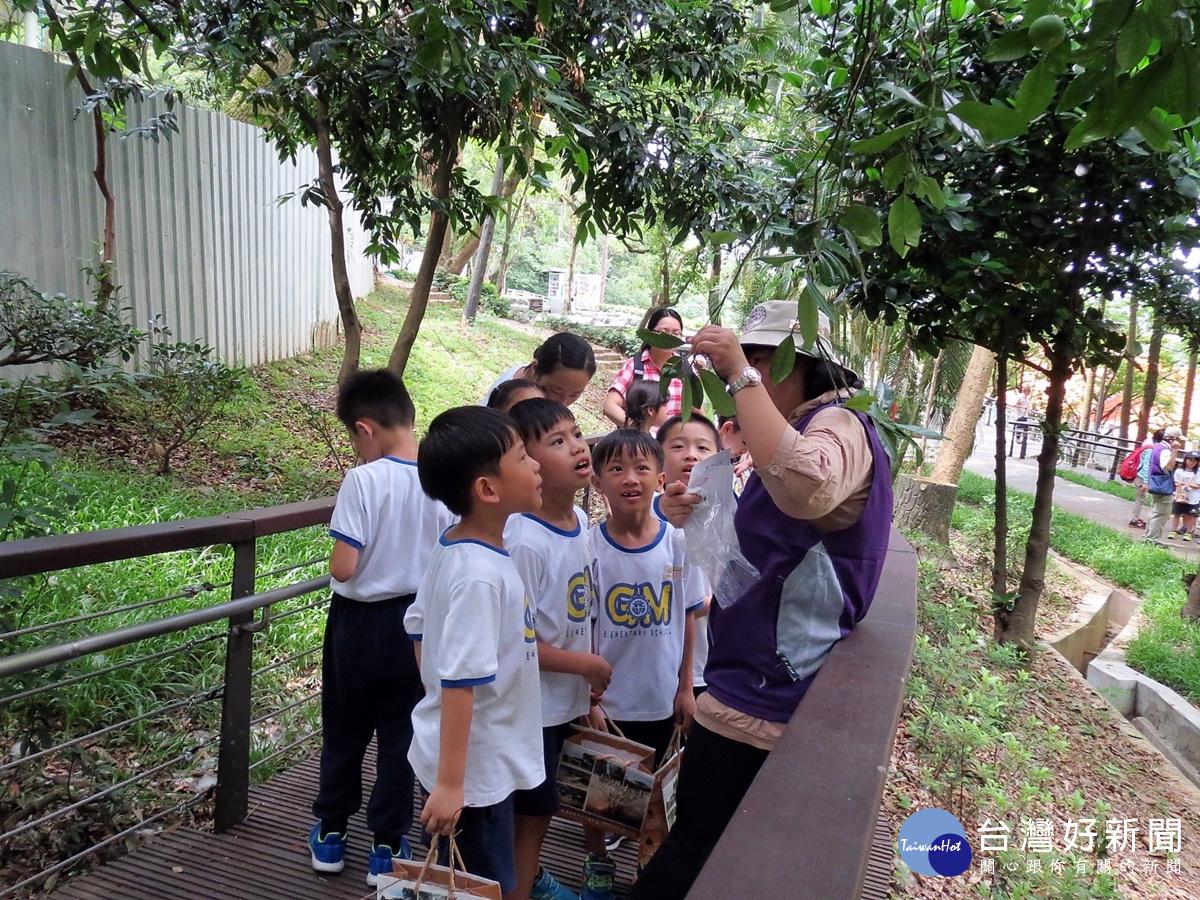 桃園人的後花園 虎頭山公園擁有優良環境教育場所