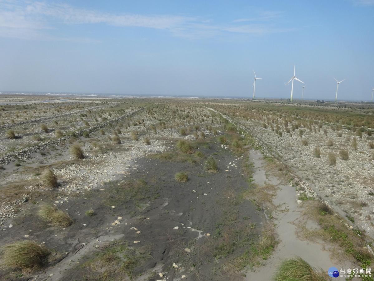 減少河川揚塵空汙 中市府展開沿岸造林等防護作業