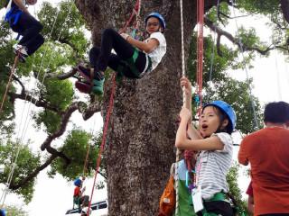 苗縣繩索攀樹親子研習活動 體驗大樹強健生命力