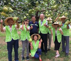 苗栗醫院認購文旦柚以實際行動做愛心。(記者許素蘭/攝)