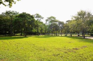 「大溪區埔頂公園改善案」,公園面積約5.5公頃,預計今(106)年底前發包動工。