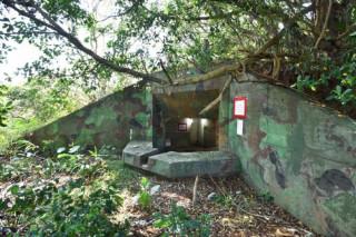 平鎮區雙連坡碉堡公園及忠愛公園新闢綠美化工程開工典禮。