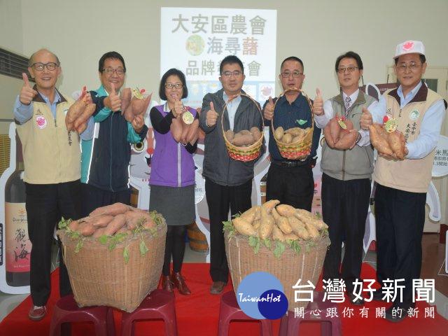 大安農會辦海尋薯品牌發表會 協助農民提高收益