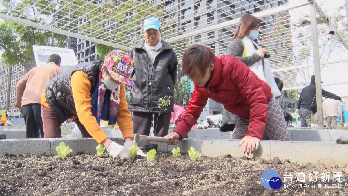 活化閒置機關用地 三重碧華里打造可食地景公園
