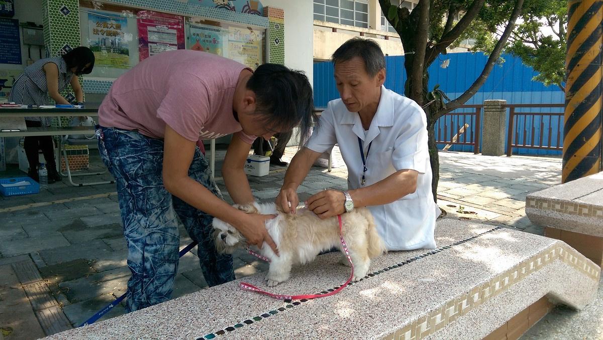 狂犬病鼬獾咬人案頻傳 中市動保處籲飼主帶毛小孩施打狂犬疫苗