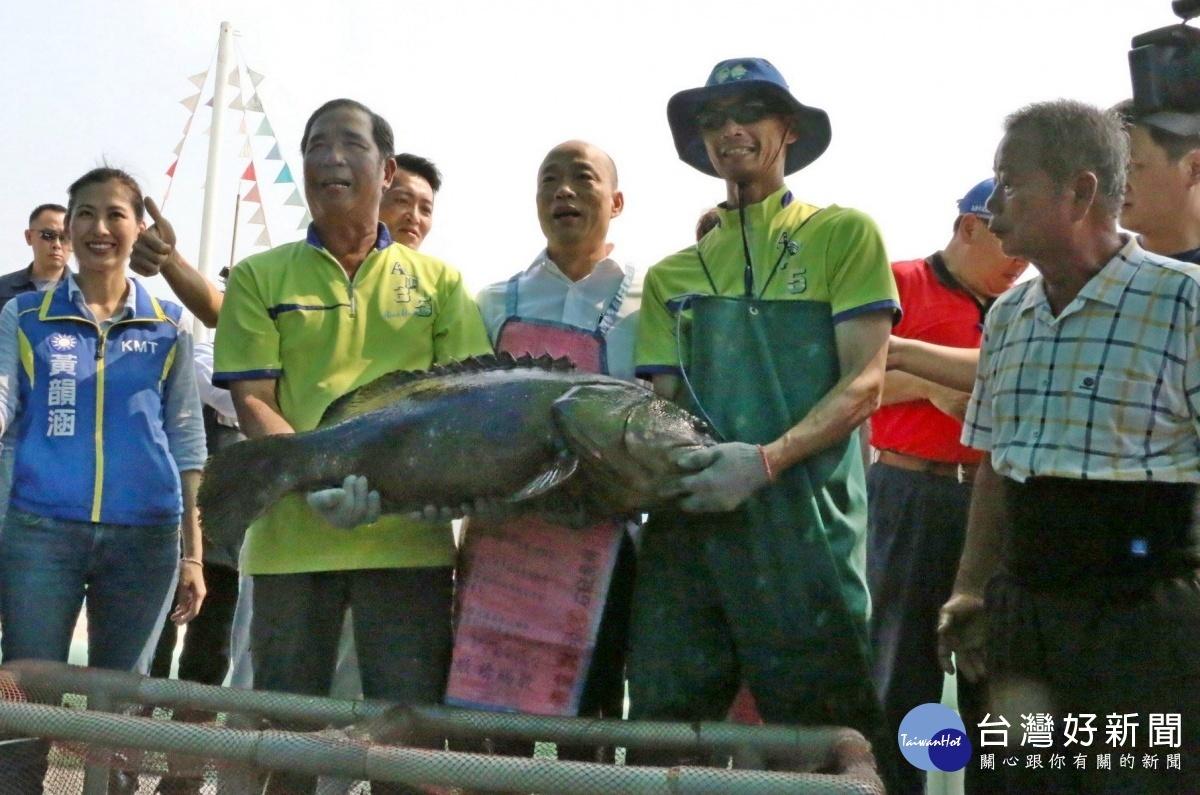 高雄市長韓國瑜著漁夫裝,抱起重達30斤龍膽石斑。