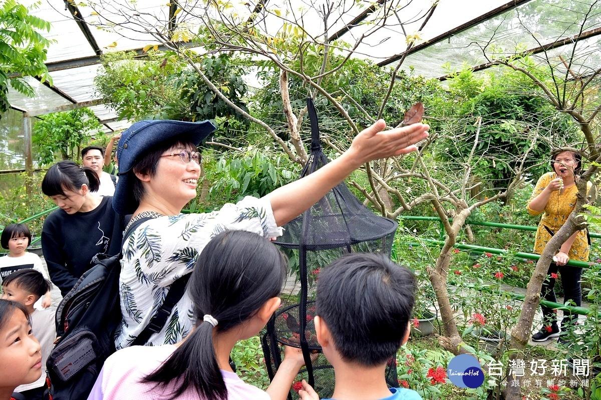 日月潭秋冬遊玩很大 昆蟲生態、泡湯親子遊