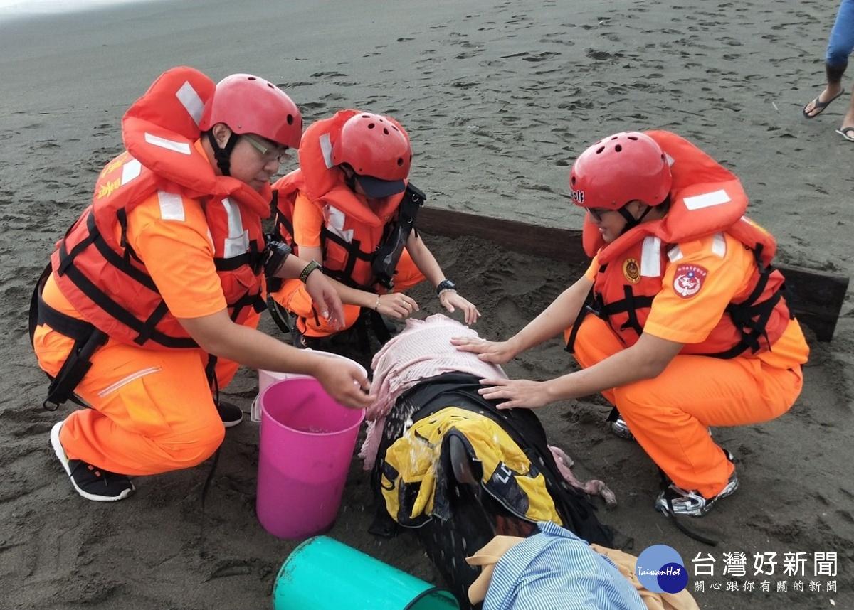 2隻瓜頭鯨擱淺 海巡迅速搶救