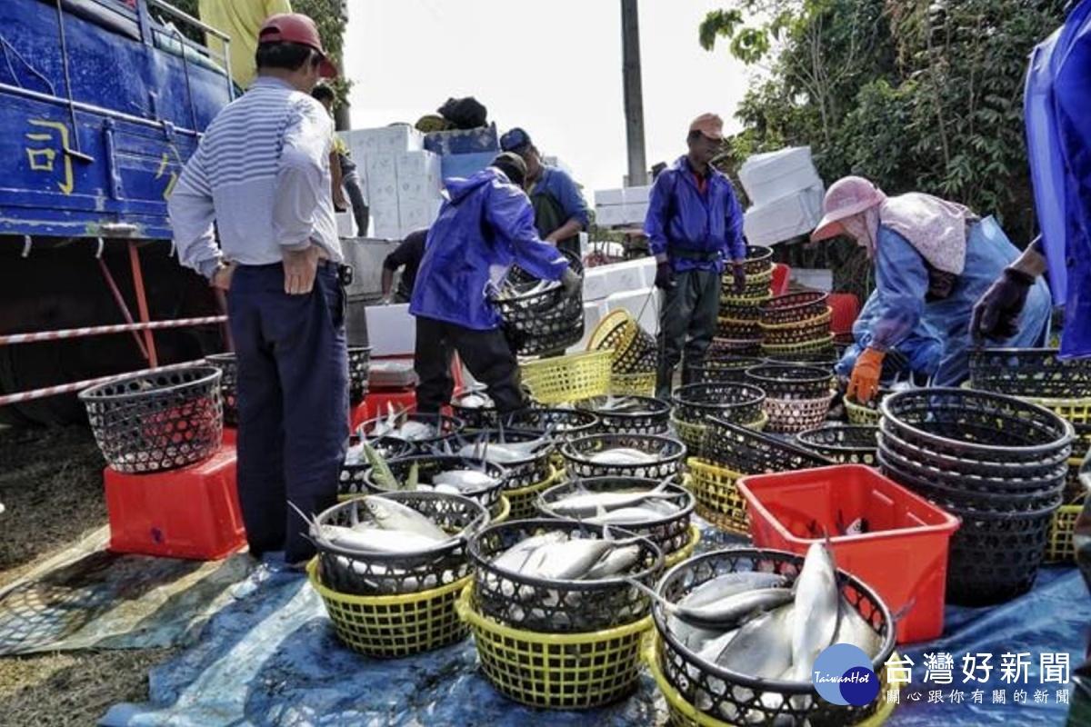 減少漁民天災損失 南市籲請漁民投保水產保險