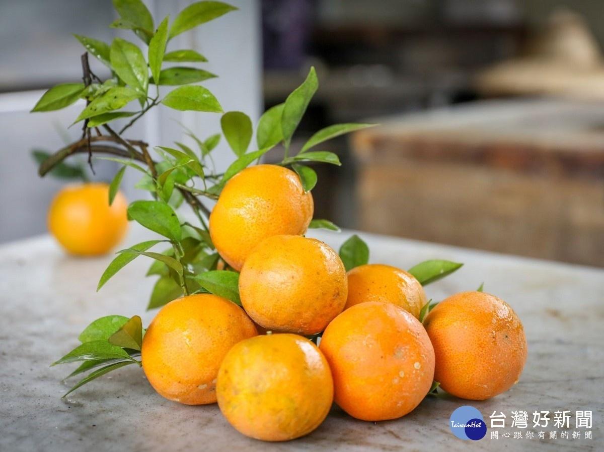 八里老欉桶柑 甘甜多汁順口好吃