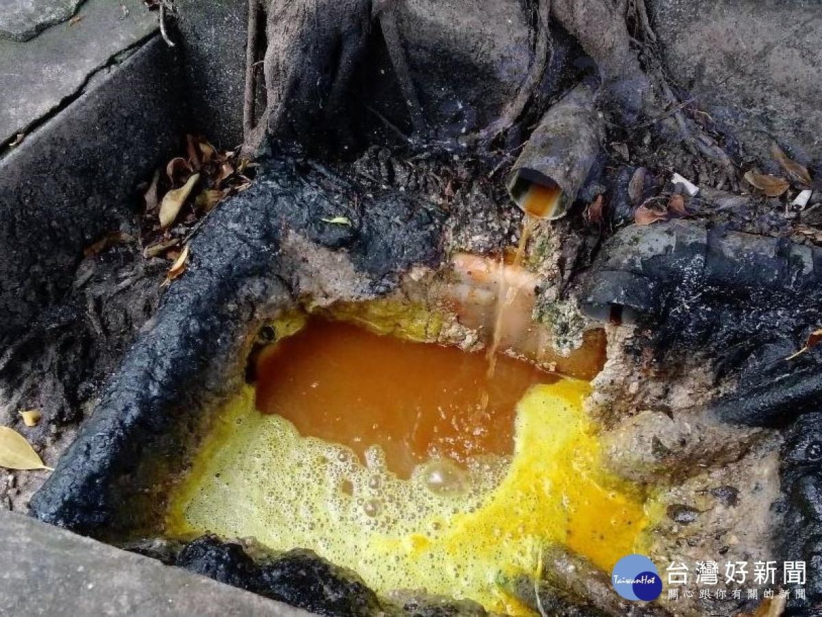 五股坑溪遭油脂污染 环