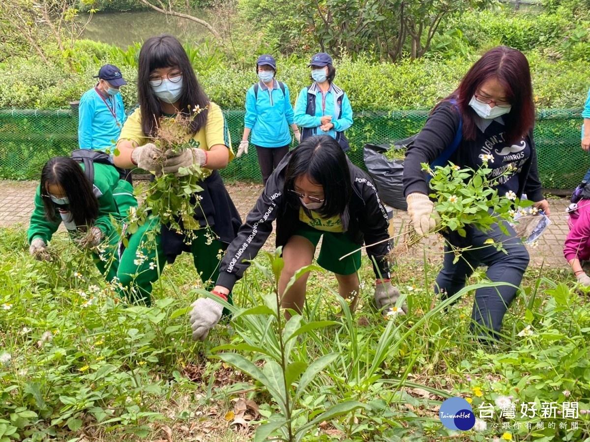 塭仔底溼地公園五感體驗 家庭志工根除強勢外來種植物