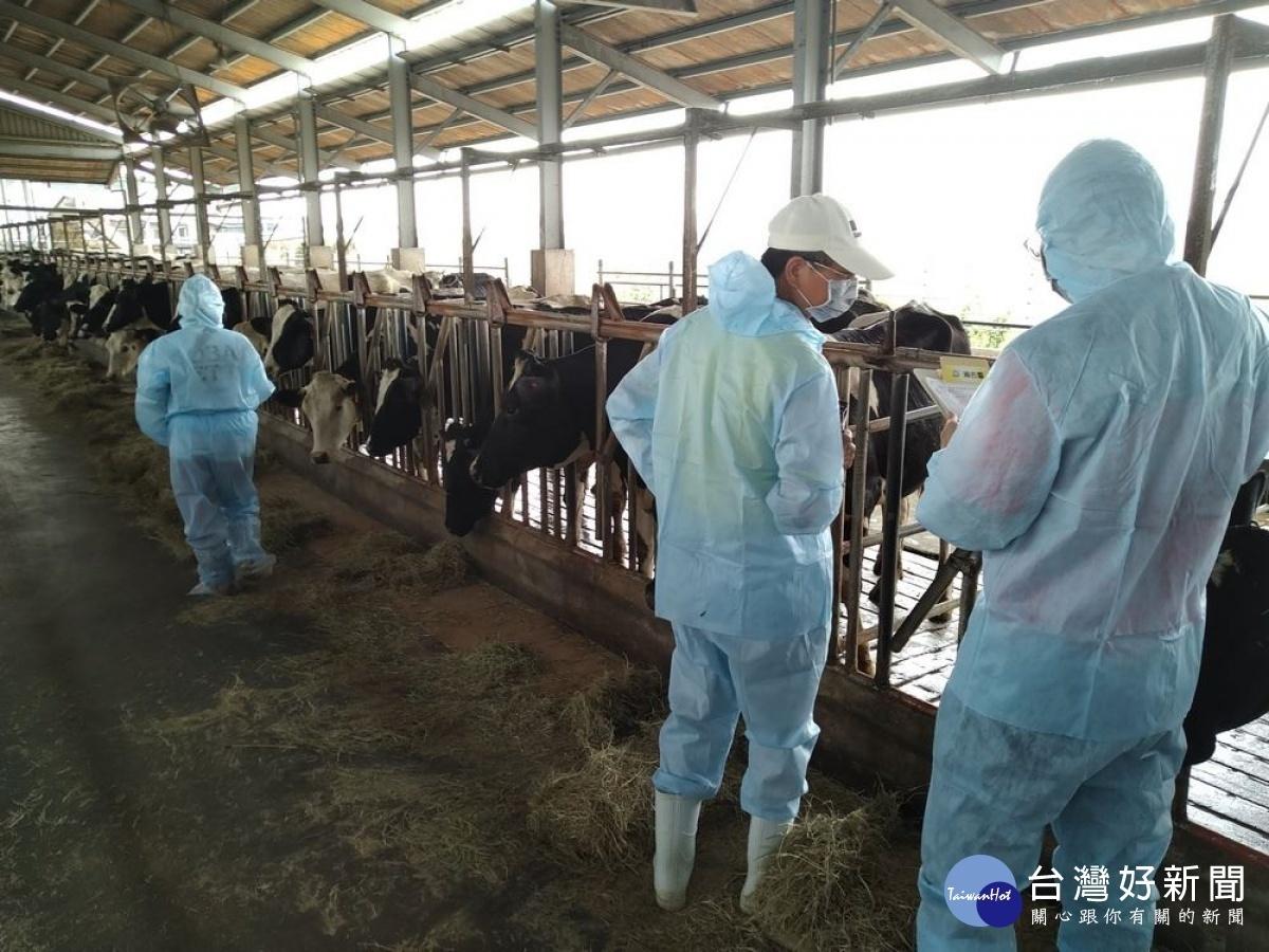 全面防堵牛結節疹感染 屏縣成立動物疫災應變中心