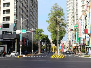 公園南路優質化道路暨共桿路燈